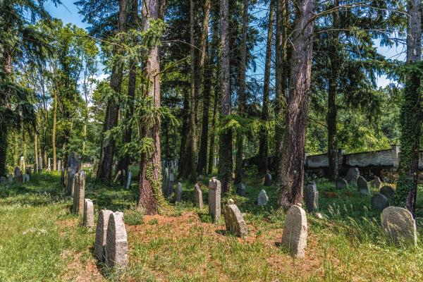 Fotografie k Židovský hřbitov u Milevska