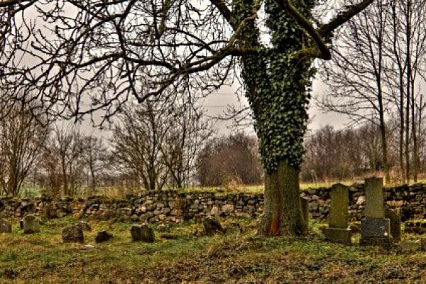 Fotografie k Židovský hřbitov u Chyšek