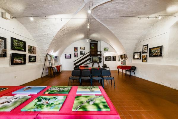 Fotografie k Galerie M